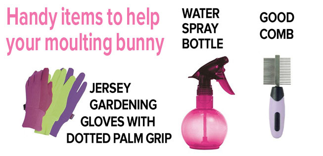Best4bunny-Moult-products