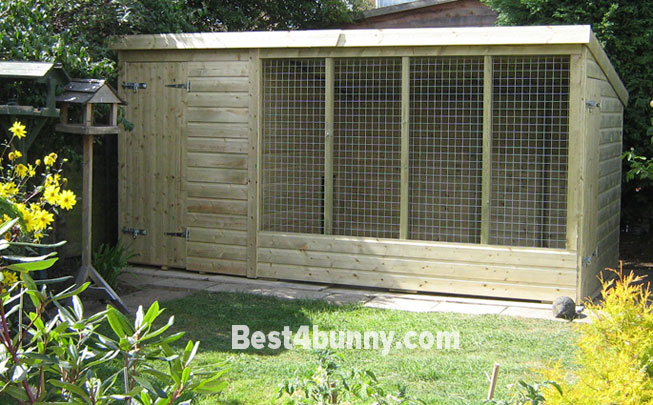 Rabbit dog kennel house