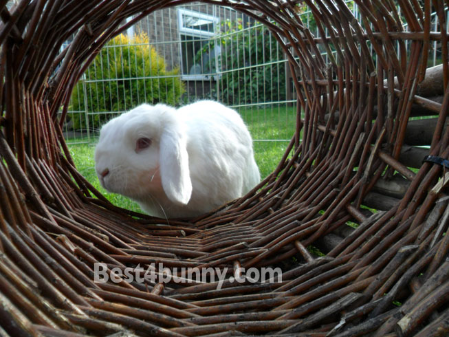 Bunny wicker toy