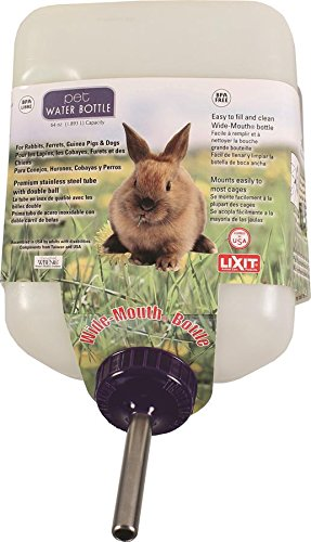 Lixit Corporation SLX0670 All Weather Rabbit Water Bottle, 64-Ounce