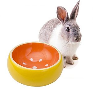 Mkono No-Tip Ceramic Rabbit Food Bowl Feeder