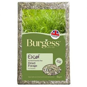 Burgess Excel Fresh Forage 1kg (PACK OF 2)