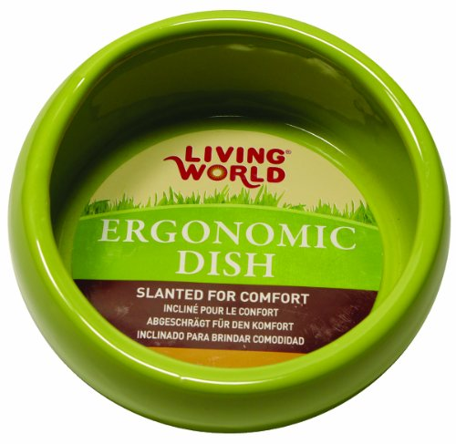 Living World Ergonomic Dish, Green, Small