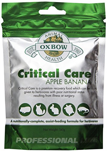 >Oxbow Critical Care Apple/Banana Pet Supplement, 141gm