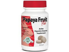 Oxbow Papaya Fruit Plus Digestive Enzyme, 90 tablets